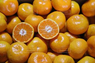 カラフル,フルーツ,果物,みかん,フレッシュ
