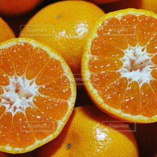 カラフル,フルーツ,果物,みかん,柑橘,フレッシュ
