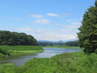 秘密の散歩道からの風景の写真・画像素材[1394061]