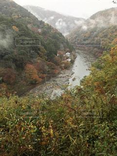 背景の木と岩が多い山のビュー - No.755112