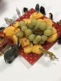 フルーツ 秋 動物 果物