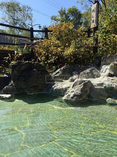 川湯温泉あし湯の写真・画像素材[780995]