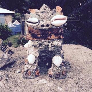 散歩,貝殻,沖縄,旅行,手作り,シーサー,波照間島,琉球,ユニーク,守り神