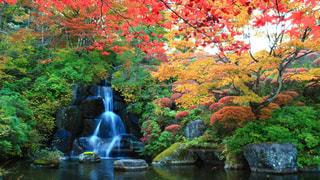古峰神社 紅葉と滝の写真・画像素材[764905]
