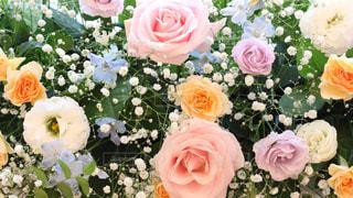 ふたりを囲む花 - No.818105