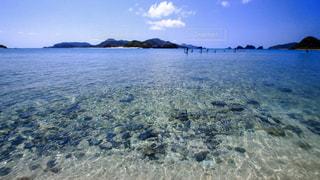透き通る海 座間味島の写真・画像素材[1104889]