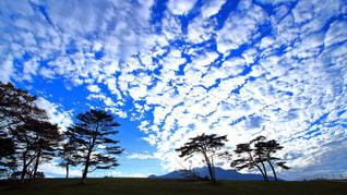 大笹牧場より 鱗雲の写真・画像素材[1104964]