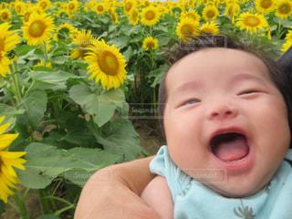 黄色い花の上に座って赤ちゃんの写真・画像素材[850453]