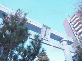 建物の前にツリー - No.986617