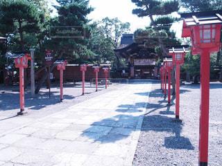 神社の写真・画像素材[990971]