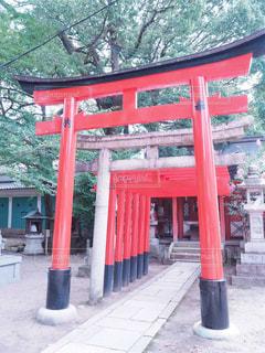 京都の神社巡りの写真・画像素材[992735]