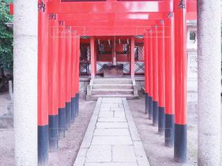 京都の神社巡りの写真・画像素材[992738]
