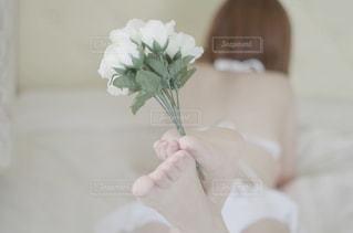 花との写真・画像素材[1018427]