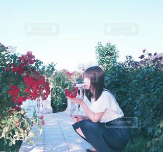女性の写真・画像素材[2481337]