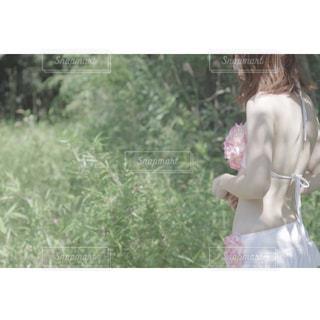 夏の日の写真・画像素材[3206468]