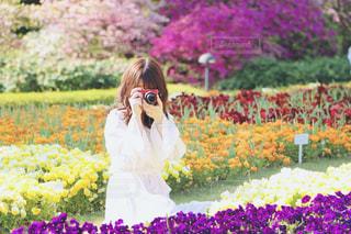 フィールドに紫の花を持つ人の写真・画像素材[1831029]