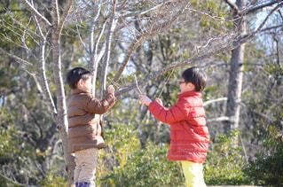 仲良しの写真・画像素材[988412]