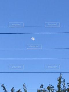 澄んだ青い空の写真・画像素材[1465785]