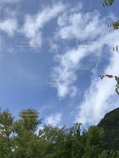 秋の空の写真・画像素材[1465795]