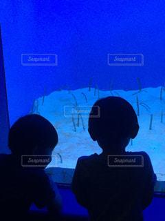 後ろ姿,水族館,暗い,人物,人,画面,少年