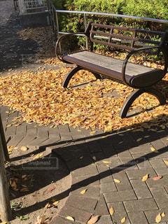 フェンスの横にある空の公園ベンチの写真・画像素材[864158]
