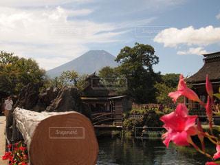 忍野八海からの富士山 - No.788202