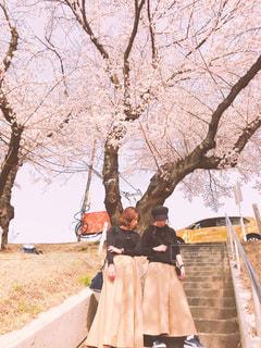 春,桜,黒,お花見,ベージュ,ぽかぽか,おソロ,春コーデ