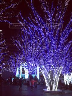 博多駅の夜景の写真・画像素材[1690666]