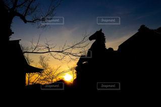 風景,空,夕日,木,屋外,太陽,雲,夕焼け,夕暮れ,景色,シルエット,光,観光,樹木,逆光,旅行,馬,像,レジャー,景観,草木,眺め,犬山城,愛知,犬山市,風景グラデーション