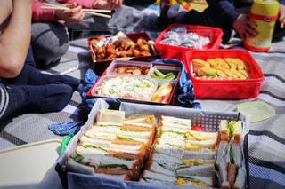 ピクニックでお弁当を囲む人達の写真・画像素材[3056242]