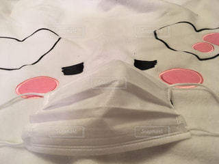 マスクをした色白さん(o^^o)の写真・画像素材[1076911]