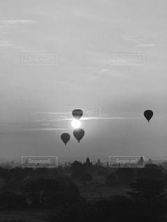 空を飛んでいるカモメの群れの写真・画像素材[842447]