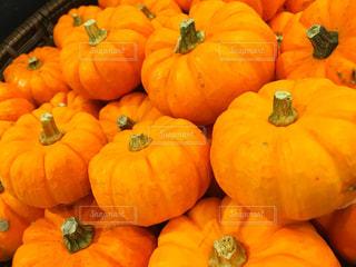 かぼちゃの写真・画像素材[828194]