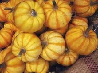 黄色のかぼちゃの写真・画像素材[831723]