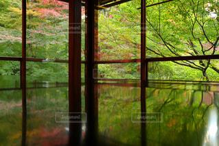 大きなガラス窓の写真・画像素材[906192]