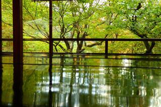 水の体の上の橋の写真・画像素材[906196]