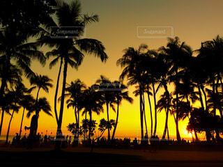 ワイキキビーチの夕焼けの写真・画像素材[956982]