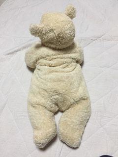 冬,茶色,癒し,赤ちゃん,可愛い,クマ,もこもこ,うつ伏せ,もこもこ  クマ  赤ちゃん  後ろ姿  癒し 可愛い 冬