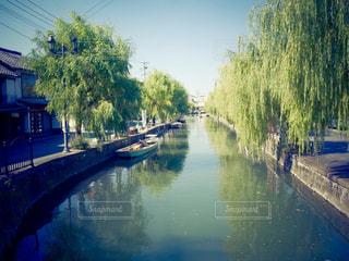 舟,川,景色,川下り,柳の木,レトロな街並み