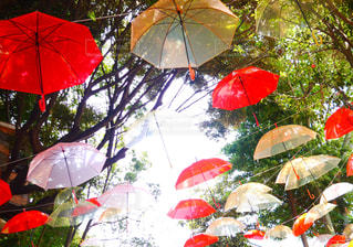 カラフルな傘の村の写真・画像素材[815809]