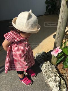 ハイビスカス,沖縄,女の子,旅行