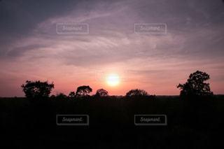 夕焼け空に浮かぶ雲の写真・画像素材[985629]