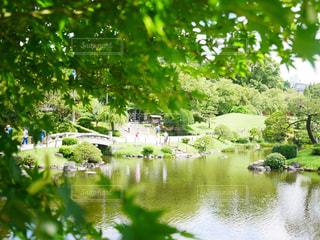 熊本県,水前寺成趣園