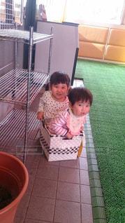箱入り娘の写真・画像素材[816021]