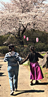 女性,桜,お花見,春コーデ,♡春コーデ2018♡