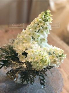 近くの花のアップの写真・画像素材[1215582]