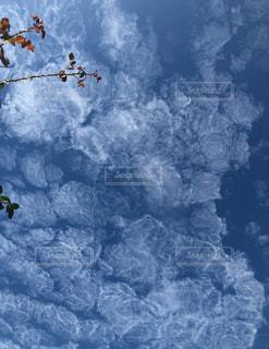 秋晴れ,秋の空,澄み渡る青空,秋の雲,不思議な雲,秋空♡,泡みたいな雲