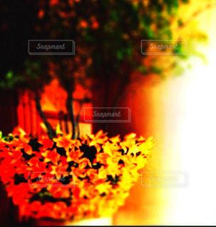 フラワーアレンジメント,レトロ,フィルム,フィルム写真,ホテルラウンジ,フィルムフォト,フィルム風写真