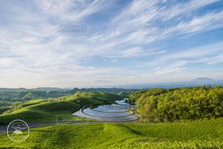 自然,棚田,景色,新緑,阿蘇,高原