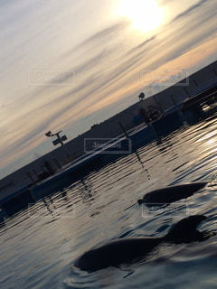 水の中の大型船の写真・画像素材[926660]
